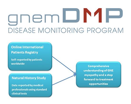 DMP logo - schematic